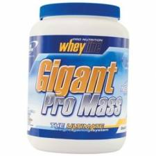Гейнер Pro Nutrition-Whey Line GIGANT PRO MASS 5kg.